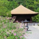 夏の白水阿弥陀堂